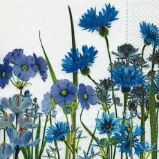 Veilchen, Kornblumen & Teufelskralle - Violets, Cornflowers & Devils Claw - Violettes, bleuets et griffe du diable