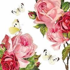 5 Schmetterlinge besuchen wunderschöne Rosen5 butterflies visit beautiful roses - 5 papillons visitent de belles roses