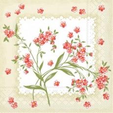 gemalte Lichtnelken - painted carnations - oeillets peints