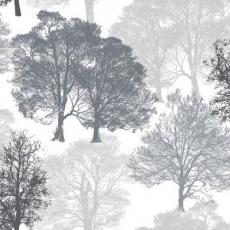 Baumlandschaft - tree landscape - arbre, paysage