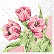 3 Tulpen - 3 tulips - 3 tulipes