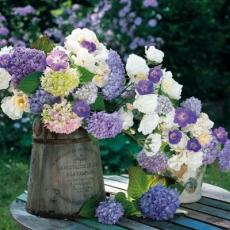 Hortensien und verschiedene andere Blumen im nostalgischen Topf - Hydrangeas and various other flowers in the nostalgic pot - Hortensias et diverses autres fleurs dans le pot nostalgique