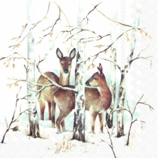 2 Rehe im Winterwald - 2 deer in the winter forest - 2 cerfs dans la forêt d hiver