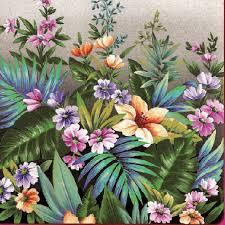 wunderschöne tropische Pflanzen - beautiful tropical plants - belles plantes tropicales