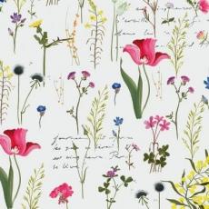 feine Gräser & Wiesenblumen - fine grasses & meadow flowers - fines herbes et fleurs de prairie