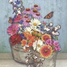 Schmetterlinge besuchen Margeriten und andere Blumen - Butterflies visit daisies and other flowers - Les papillons visitent les pâquerettes et autres fleurs