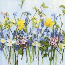 Osterglocken, Hyazinthen & andere schöne Frühlingsblüher - Easter bells, hyacinths & other beautiful spring flowers - Cloches de Pâques, jacinthes et autres belles fleurs printanières