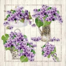 lila Veilchensträusse - purple violet bouquets - bouquets violets violets