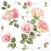 schöne Rosen -  beautiful roses - belles roses