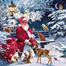 viele Tiere besuchen den Weihnachtsmann - many animals visit Santa Claus - de nombreux animaux visitent le père noël