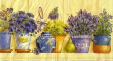 Lavendel & Blumentöpfe - Lavender & Flowerpots - Lavande & pots à fleurs