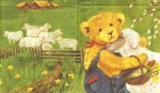 Asger - auf der Schafsweide