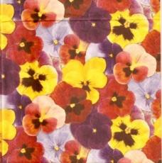 Bunter Blütenteppich