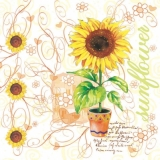 Sonnenblume im Topf und fliegende Herzen- Sunflower in the pot and flying hearts -Tournesol dans le pot et les coeurs volants