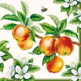 Bienen im Apfelbaum - Apple tree
