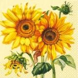 Bezaubernde Sonnenblumen
