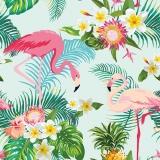 exotische Flamingos
