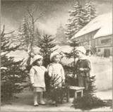Kinder unter dem Tannenbaum