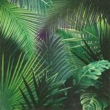 Palmenblätter aus dem Regenwald