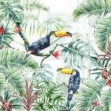 Tukane im Dschungel