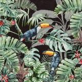 Tukane im Dschungel, schwarz