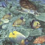 Schildkröte mit bunten Fischen im Meer