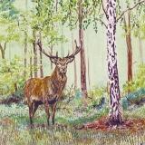 stattlicher Hirsch im Wald