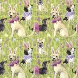 Hunde verkleidet als Hasen