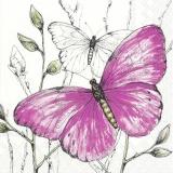 grosser pinker Schmetterling