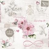 Rosa Rose mit unendlicher Liebe