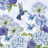 Hibiskus, Allium und andere prächtige Blumen werden vom Kolibri besucht