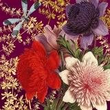 Libelle besucht wunderschöne prächtige Blüten