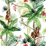 2 Orangutans hängen ab mit Papagei weiss
