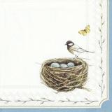 Vogelmamma passt auf die 3 Vogeleier im Nest mit dem gelben Schmetterling auf