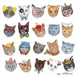 20 bunte Katzengesichter