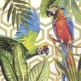 Papagei im tropischen Paradies