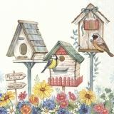 Vogelhäuser zu vermieten