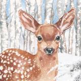 Wunderschönes Reh im verschneiten Birkenwald