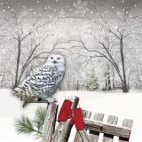 Winter Eule sitzt auf dem Zaun mit roten Handschuhen