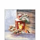 Kleines Rotkehlchen sitzt bei einer Laterne mit Drei leuchtenden Kerzen