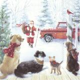Der Weihnachtsmann kommt mit Geschenkesack zu den 4 Hunden