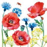 Schmetterlinge besuchen Mohnblumen und Kornblumen