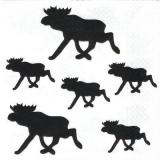 Elche - Moose