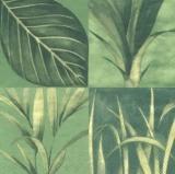 Blätter - Rainforrest