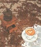 Ganz frischer Kaffee - Fresh coffee - café frais