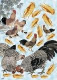 Mais für die Hühner