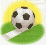 Ball auf der Torlinie - Soccer