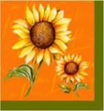 2 hübsche Sonnenblumen - 2 sunflowers