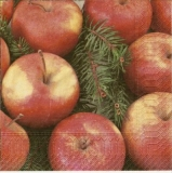 Äpfel - Apples - Pommes