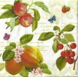 Früchte & Schmetterlinge - Fruits & butterflies